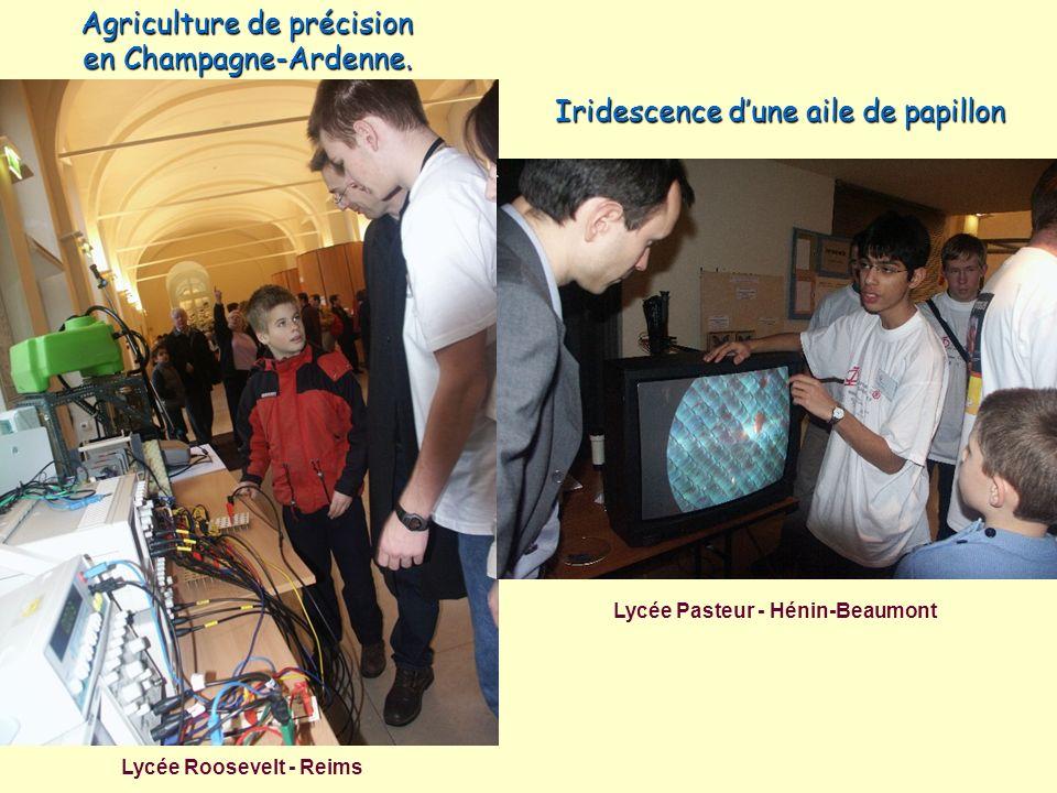 Lycée Roosevelt - Reims Lycée Pasteur - Hénin-Beaumont Agriculture de précision en Champagne-Ardenne. Iridescence dune aile de papillon