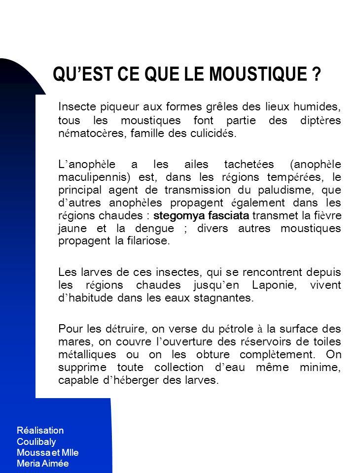 Réalisation Coulibaly Moussa et Mlle Meria Aimée 3 QUEST CE QUE LE MOUSTIQUE ? Insecte piqueur aux formes grêles des lieux humides, tous les moustique