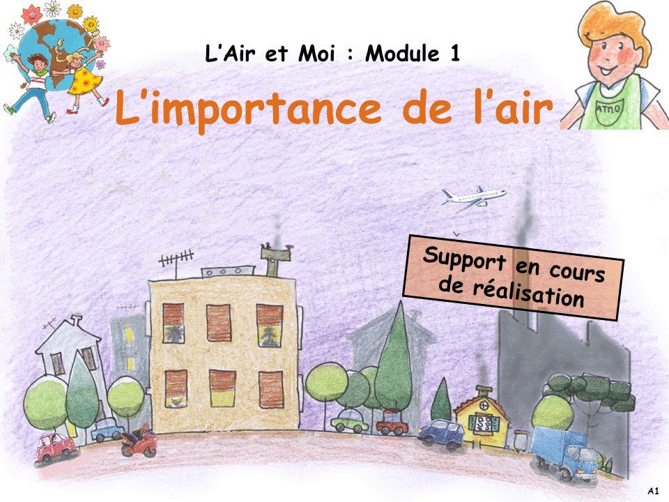 Support en cours de réalisation Limportance de lair LAir et Moi : Module 1 A1