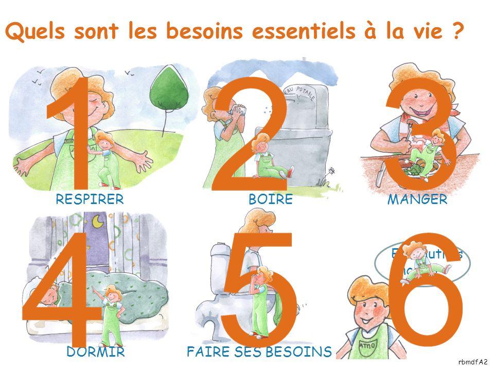 Plus de 10 000 litres Entre 1 000 et 10 000 litres Entre 100 et 1 000 litres Moins de 100 litres Oui .