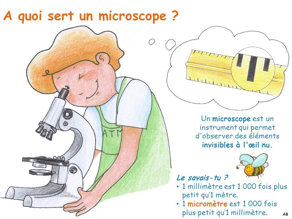 A quoi sert un microscope ? Le savais-tu ? 1 millimètre est 1 000 fois plus petit qu1 mètre. 1 micromètre est 1 000 fois plus petit qu1 millimètre. Un