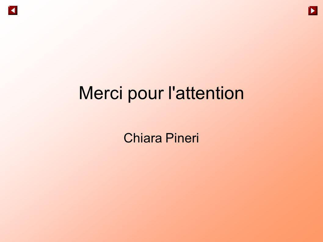 Merci pour l'attention Chiara Pineri