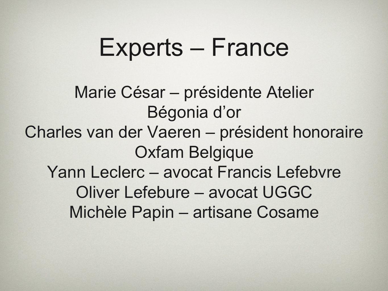 Experts – France Marie César – présidente Atelier Bégonia dor Charles van der Vaeren – président honoraire Oxfam Belgique Yann Leclerc – avocat Franci