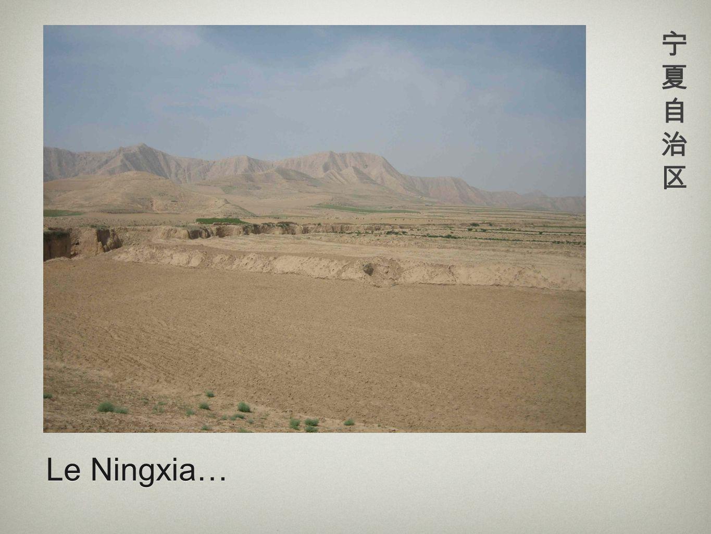 Le Ningxia…