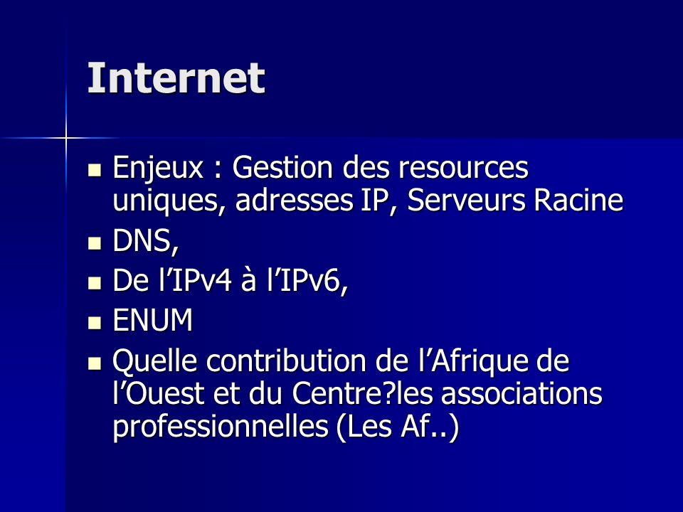 Internet Enjeux : Gestion des resources uniques, adresses IP, Serveurs Racine Enjeux : Gestion des resources uniques, adresses IP, Serveurs Racine DNS, DNS, De lIPv4 à lIPv6, De lIPv4 à lIPv6, ENUM ENUM Quelle contribution de lAfrique de lOuest et du Centre?les associations professionnelles (Les Af..) Quelle contribution de lAfrique de lOuest et du Centre?les associations professionnelles (Les Af..)