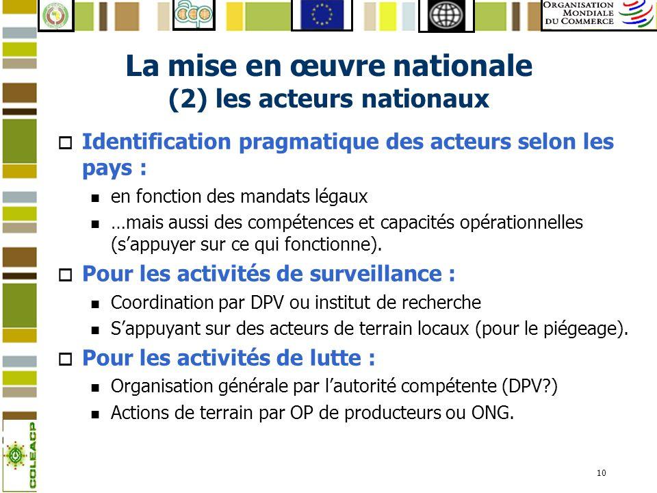 11 Organigramme institutionnel proposé
