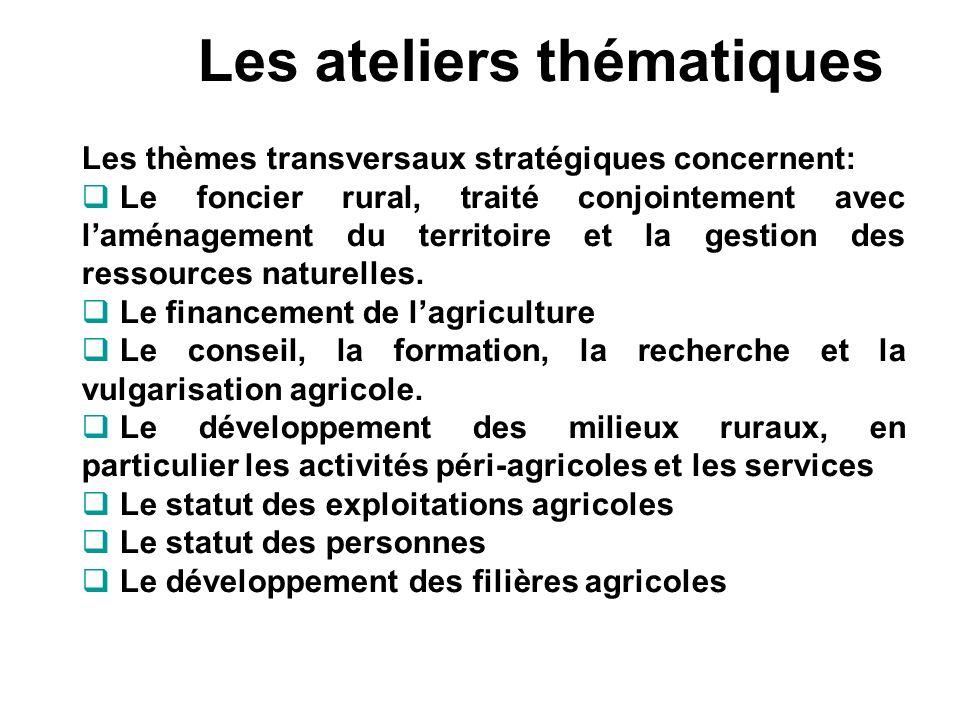 Les ateliers thématiques Les thèmes transversaux stratégiques concernent: Le foncier rural, traité conjointement avec laménagement du territoire et la