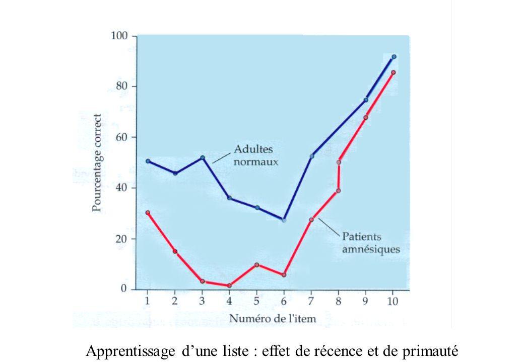 Apprentissage dune liste : effet de récence et de primauté