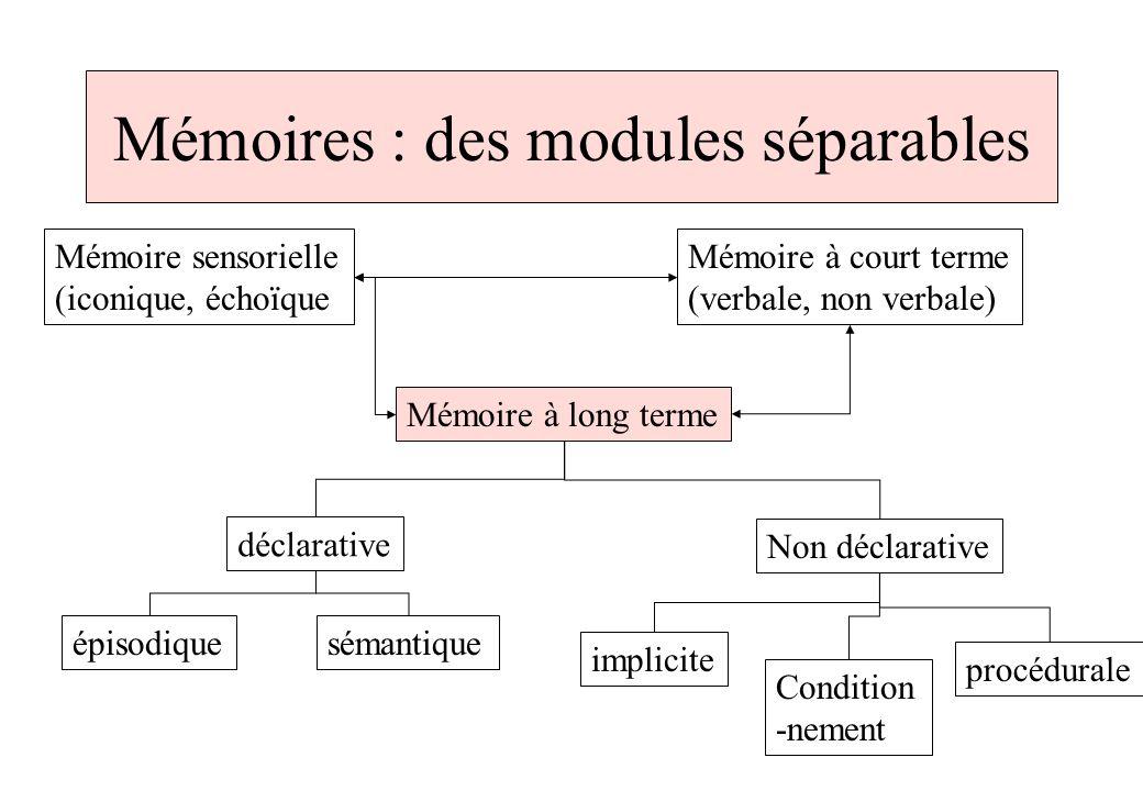 Mémoire Échoïque