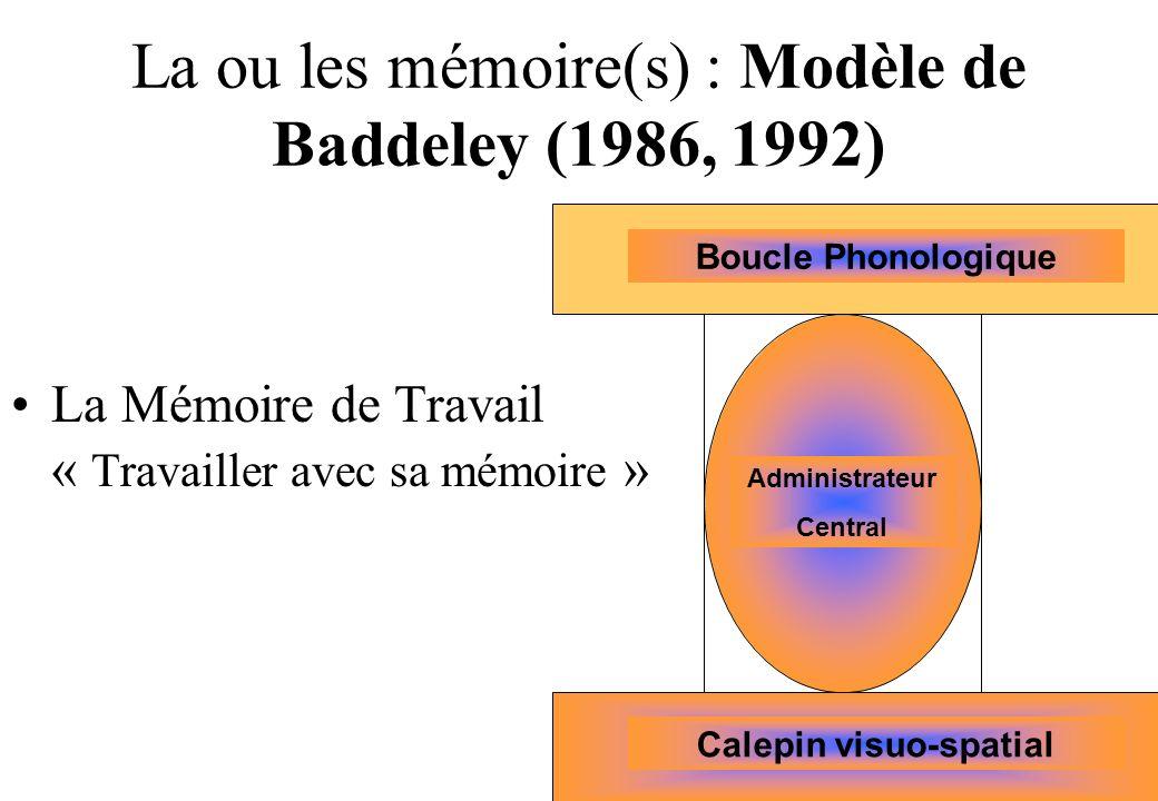 La ou les mémoire(s) : Modèle de Baddeley (1986, 1992) La Mémoire de Travail « Travailler avec sa mémoire » Boucle Phonologique Administrateur Central