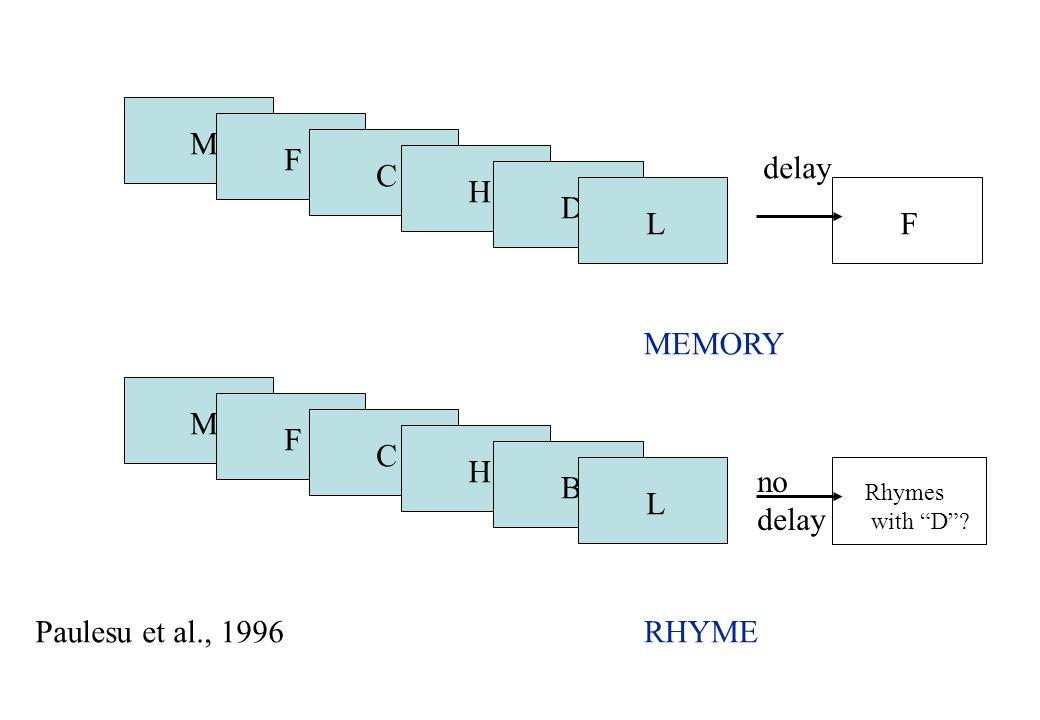 M F C H D FL MEMORY M F C H B Rhymes with D? L RHYMEPaulesu et al., 1996 delay no delay