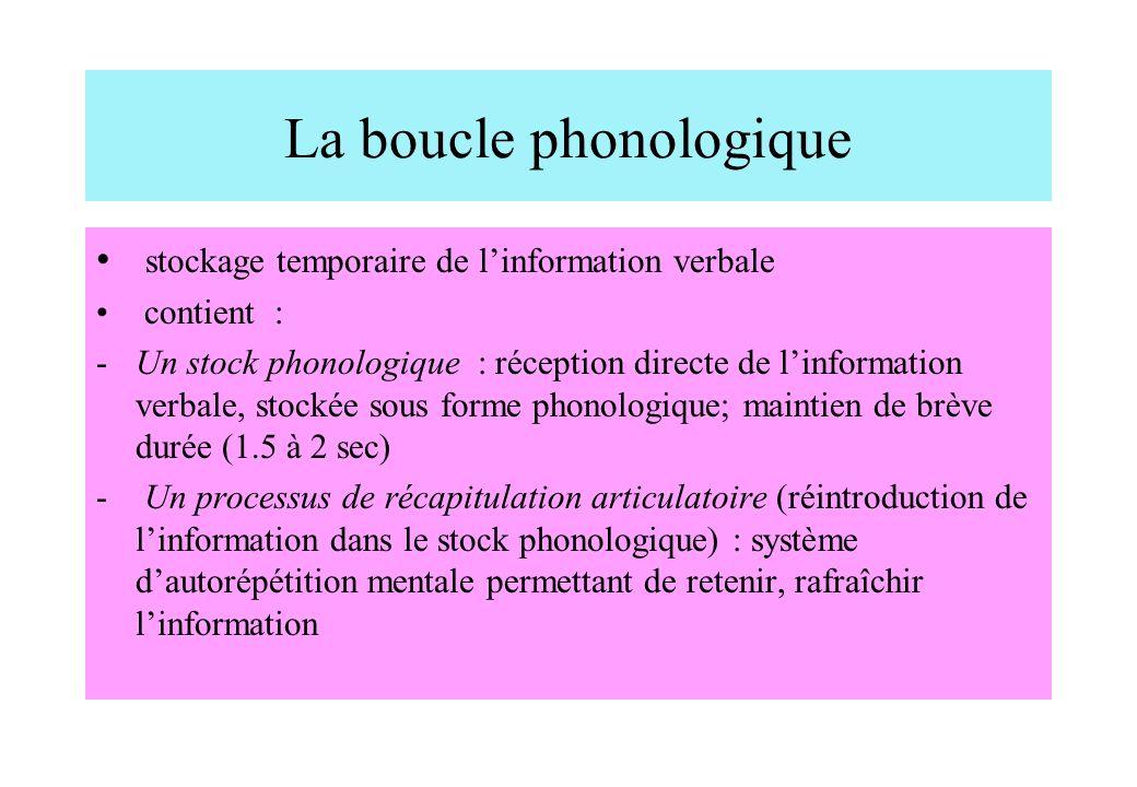 La boucle phonologique stockage temporaire de linformation verbale contient : -Un stock phonologique : réception directe de linformation verbale, stoc