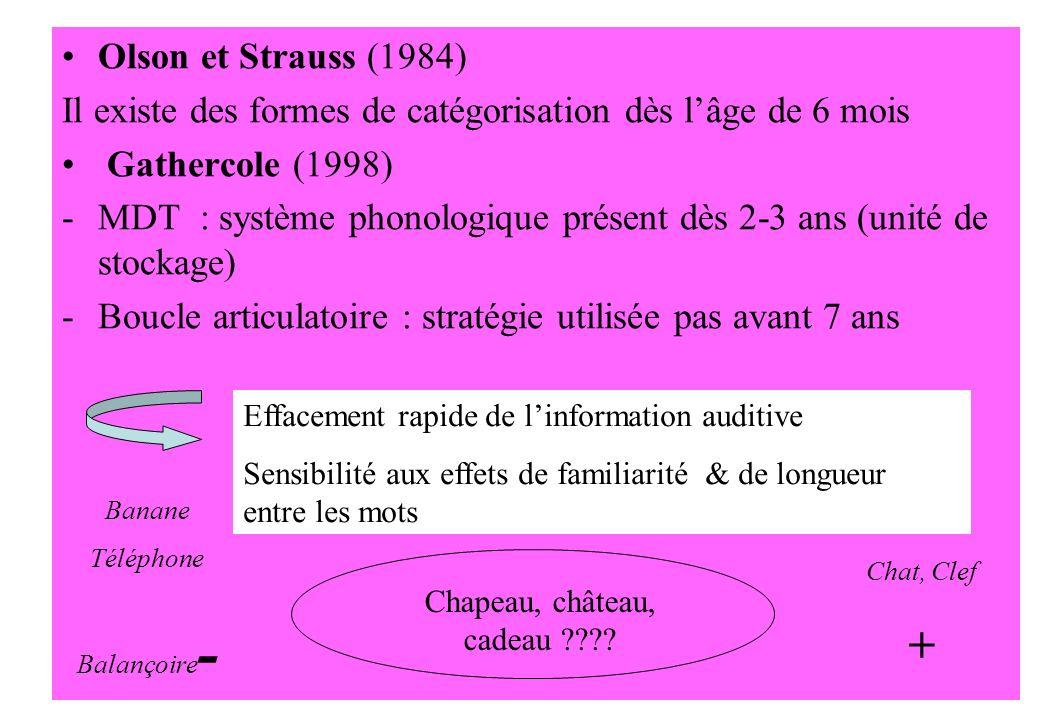 Olson et Strauss (1984) Il existe des formes de catégorisation dès lâge de 6 mois Gathercole (1998) -MDT : système phonologique présent dès 2-3 ans (u