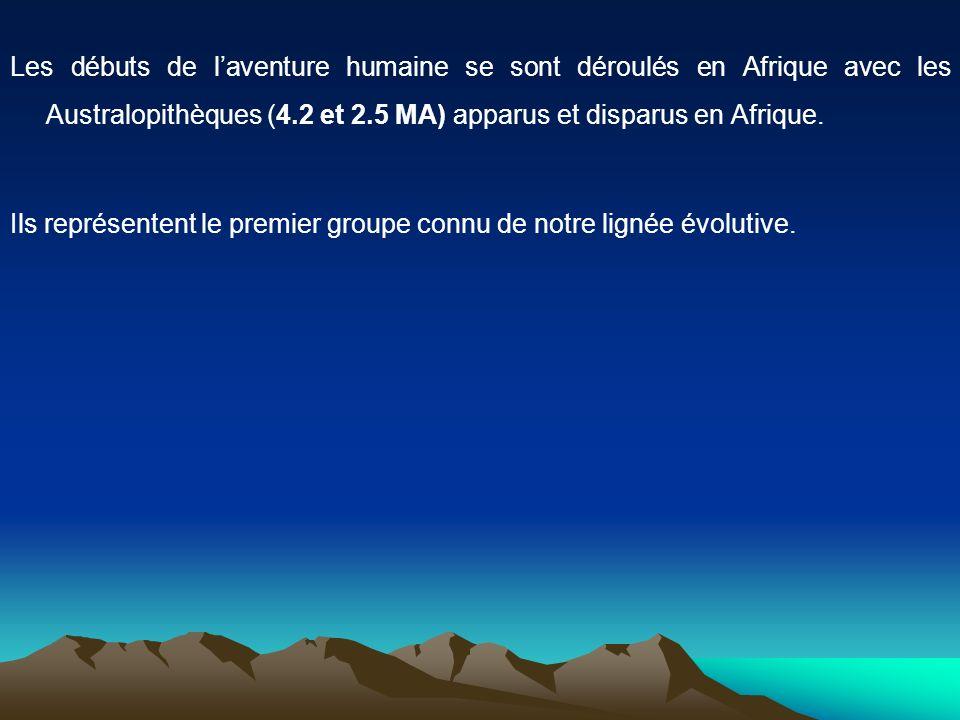 Les débuts de laventure humaine se sont déroulés en Afrique avec les Australopithèques (4.2 et 2.5 MA) apparus et disparus en Afrique. Ils représenten