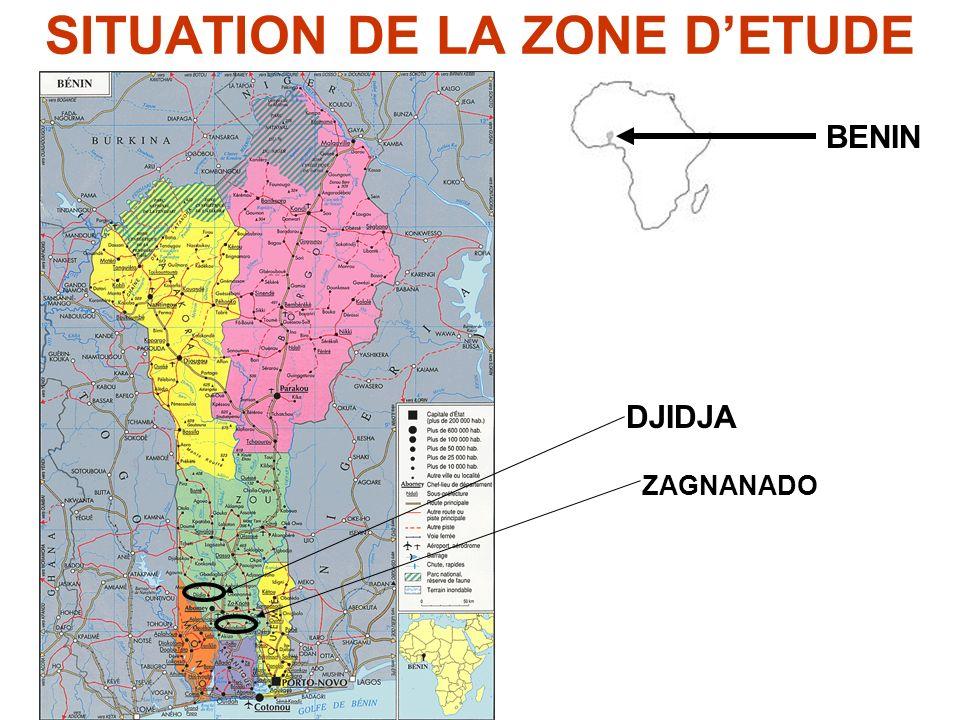SITUATION DE LA ZONE DETUDE BENIN DJIDJA ZAGNANADO
