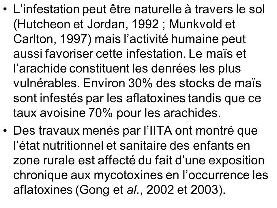 Deux études épidémiologiques menées, lune sur 480 enfants de moins de 5 ans répartis dans 16 villages au Bénin et au Togo, et lautre sur dans 200 enfants de moins de 3 ans dans quatre villages dont deux sont très exposés aux aflatoxines ont révélé la présence de laflatoxine dans le sang de 99% des enfants.