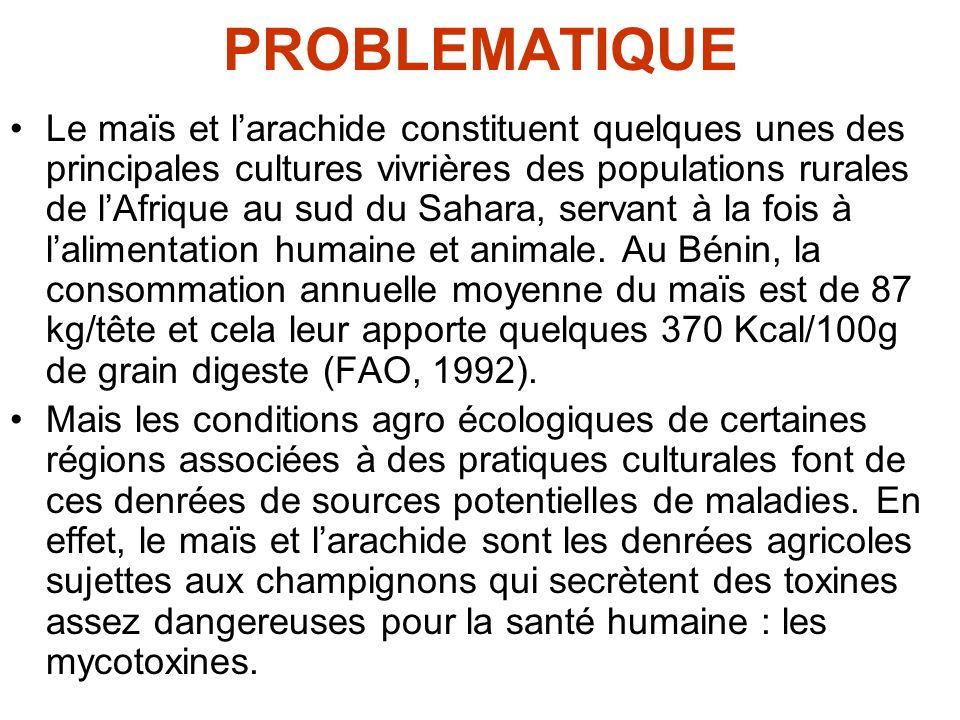 PROBLEMATIQUE Le maïs et larachide constituent quelques unes des principales cultures vivrières des populations rurales de lAfrique au sud du Sahara,