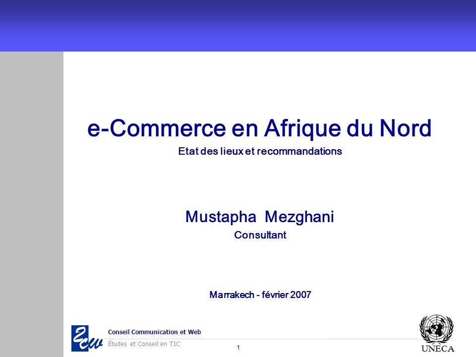 12 Conseil Communication et Web Études et Conseil en TIC UNECA Les formes de commerce électronique Internet TV Interactive EDI/VAN Internet Extranet...