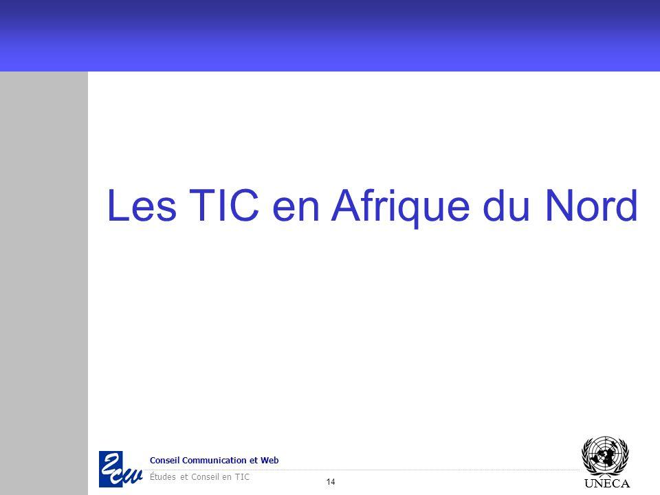 14 Conseil Communication et Web Études et Conseil en TIC UNECA Les TIC en Afrique du Nord