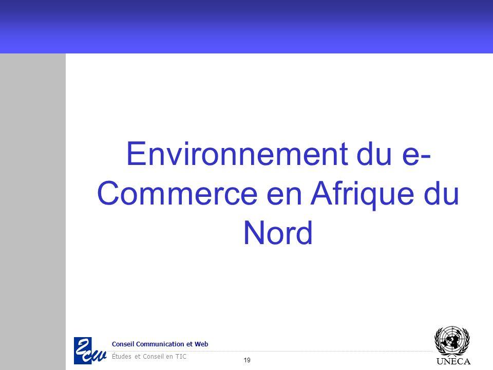 19 Conseil Communication et Web Études et Conseil en TIC UNECA Environnement du e- Commerce en Afrique du Nord