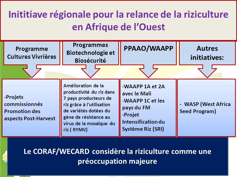 Programme Cultures Vivrières PPAAO/WAAPPAutres initiatives: Programmes Biotechnologie et Biosécurité Inititiave régionale pour la relance de la rizicu