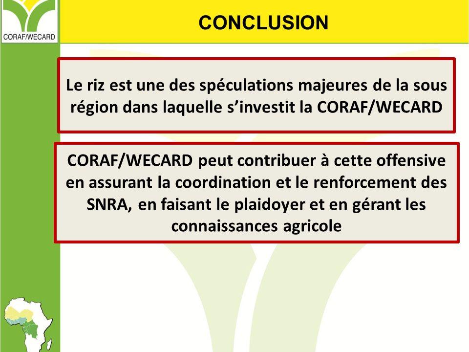Le riz est une des spéculations majeures de la sous région dans laquelle sinvestit la CORAF/WECARD CONCLUSION CORAF/WECARD peut contribuer à cette off