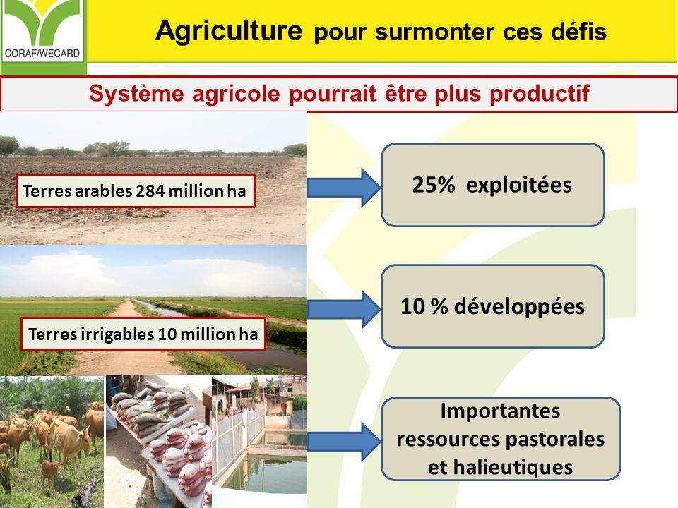 Système agricole pourrait être plus productif Terres irrigables 10 million ha Terres arables 284 million ha 25% exploitées 10 % développées Importante