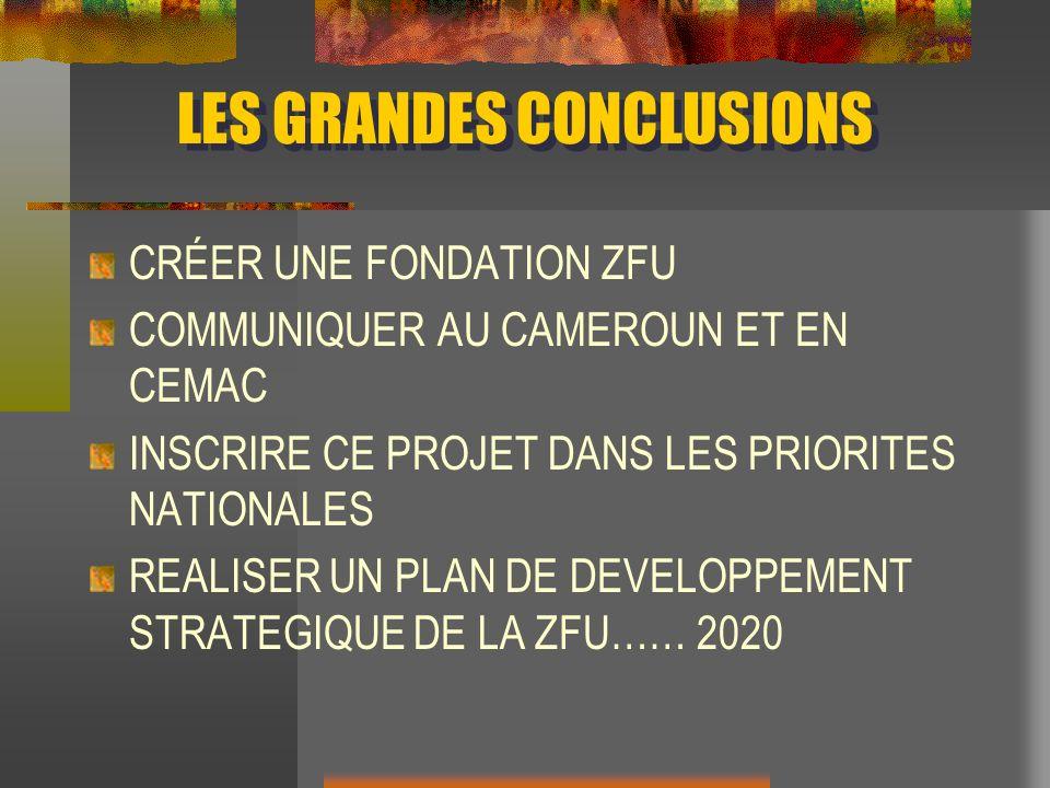 LES GRANDES CONCLUSIONS CRÉER UNE FONDATION ZFU COMMUNIQUER AU CAMEROUN ET EN CEMAC INSCRIRE CE PROJET DANS LES PRIORITES NATIONALES REALISER UN PLAN