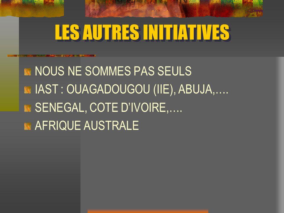 LES AUTRES INITIATIVES NOUS NE SOMMES PAS SEULS IAST : OUAGADOUGOU (IIE), ABUJA,…. SENEGAL, COTE DIVOIRE,…. AFRIQUE AUSTRALE