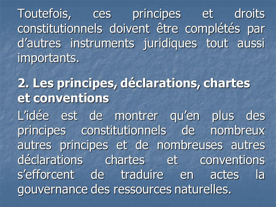 Toutefois, ces principes et droits constitutionnels doivent être complétés par dautres instruments juridiques tout aussi importants. 2. Les principes,