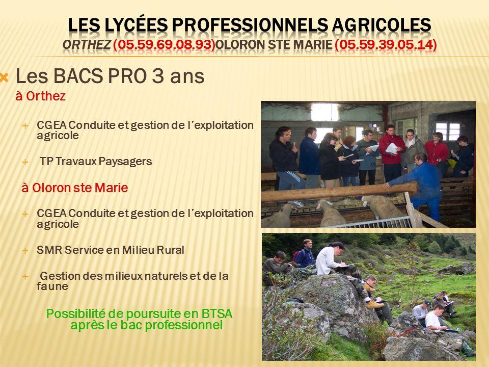 Les BACS PRO 3 ans à Orthez CGEA Conduite et gestion de lexploitation agricole TP Travaux Paysagers à Oloron ste Marie CGEA Conduite et gestion de lex