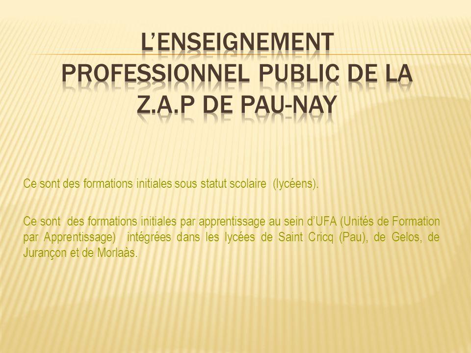 Le Certificat dAptitude Professionnelle – CAP CSI: CONDUITE DE SYSTEMES INDUSTRIELS Le BAC PRO 3ans après la 3ème – BAC PRO SEN: SYSTEMES ELECTRONIQUES NUMERIQUES Site INTERNET: www.lycee-saint-cricq.org LA SECTION DENSEIGNEMENT PROFESSIONNEL DU LYCEE GENERAL ET TECHNOLOGIQUE SAINT CRICQ - PAU Portes ouvertes le 31 mars 2012
