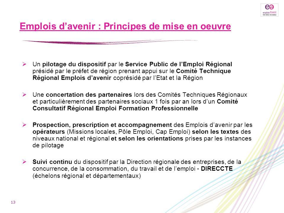 Emplois davenir : Principes de mise en oeuvre Un pilotage du dispositif par le Service Public de lEmploi Régional présidé par le préfet de région pren