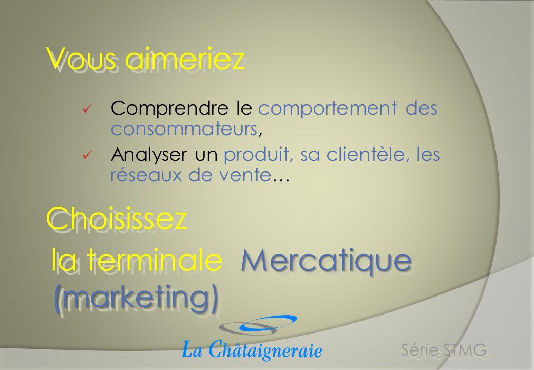 la terminale Mercatique (marketing) Série STMG Trois grands thèmes : Thème 1 : Mercatique et consommateurs Thème 2 : Mercatique et marchés Thème 3 : Mercatique et société