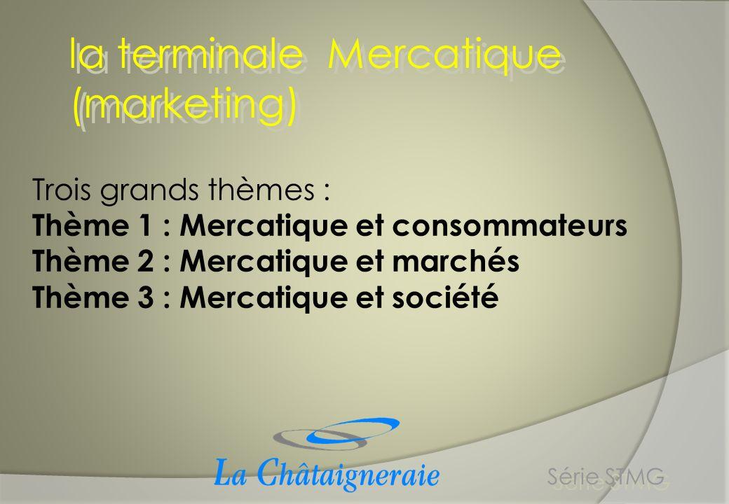 la terminale Mercatique (marketing) Série STMG Trois grands thèmes : Thème 1 : Mercatique et consommateurs Thème 2 : Mercatique et marchés Thème 3 : M