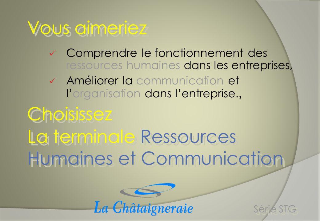 La terminale Ressources Humaines et Communication Série STG Quatre thèmes :, - Mobilisation/Motivation - Compétences/Potentiel - Cohésion/Conflits - Coordination/Coopération