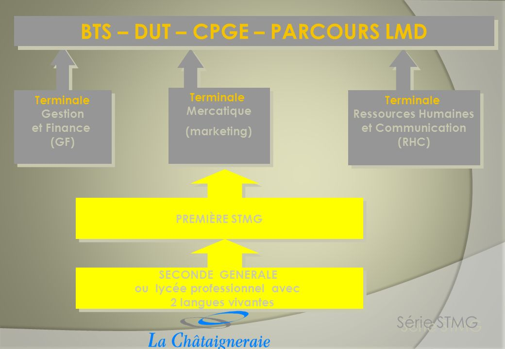 PREMIÈRE STMG Série STMG Terminale Gestion et Finance (GF) Terminale Gestion et Finance (GF) Terminale Mercatique (marketing) Terminale Mercatique (ma