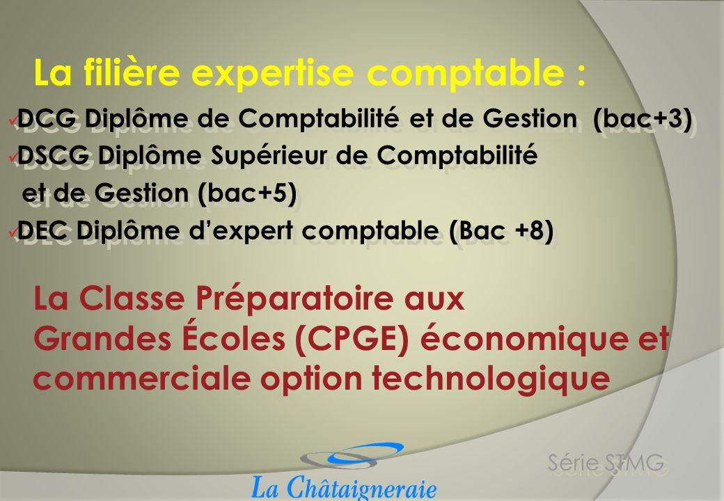 Série STMG La filière expertise comptable : DCG Diplôme de Comptabilité et de Gestion (bac+3) DSCG Diplôme Supérieur de Comptabilité et de Gestion (ba