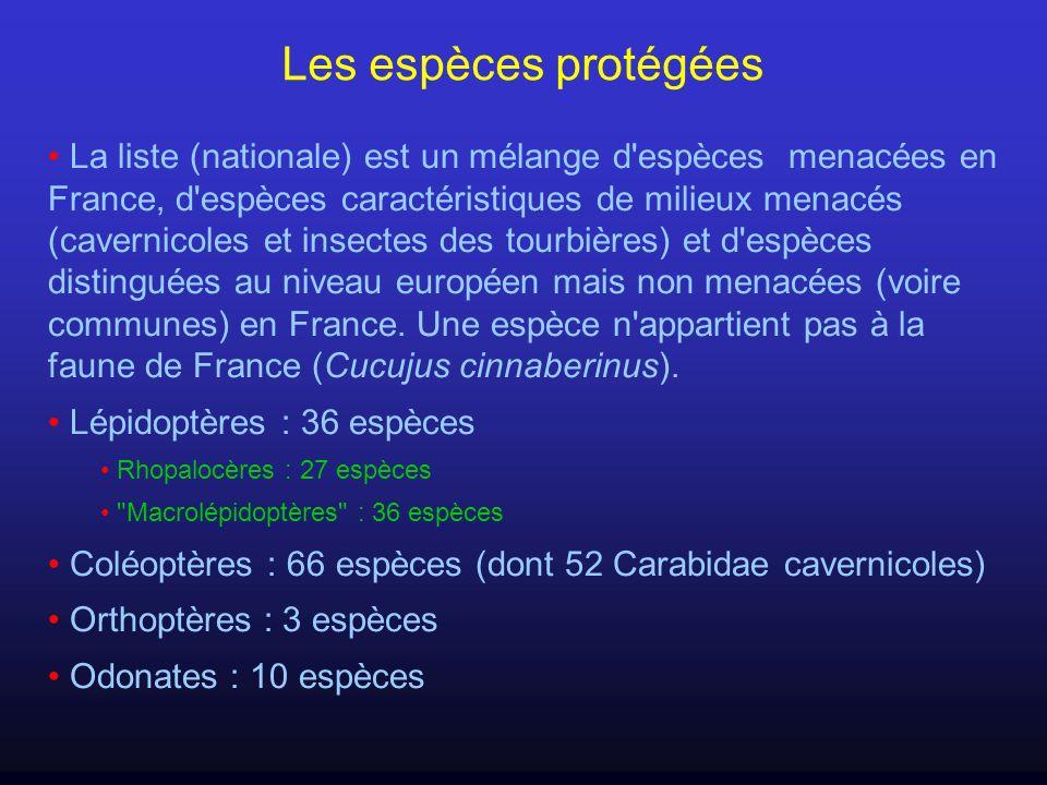 Les espèces protégées La liste (nationale) est un mélange d'espèces menacées en France, d'espèces caractéristiques de milieux menacés (cavernicoles et