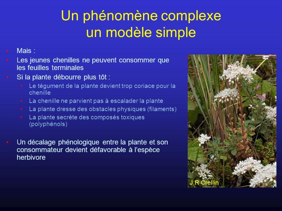 Un phénomène complexe un modèle simple Mais : Les jeunes chenilles ne peuvent consommer que les feuilles terminales Si la plante débourre plus tôt : L