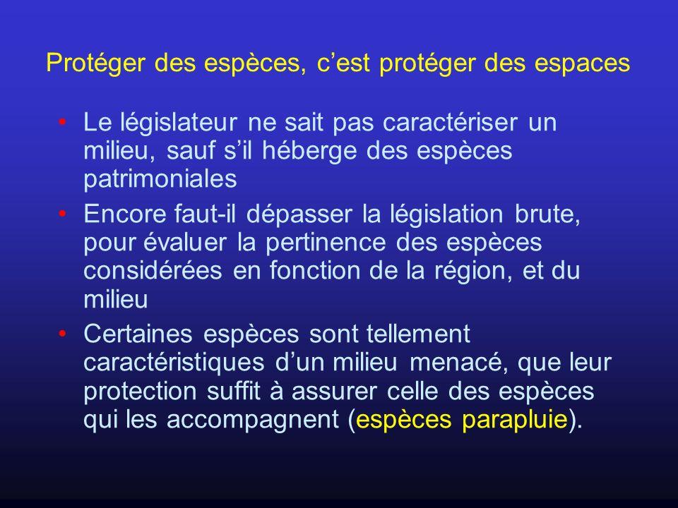 Protéger des espèces, cest protéger des espaces Le législateur ne sait pas caractériser un milieu, sauf sil héberge des espèces patrimoniales Encore f