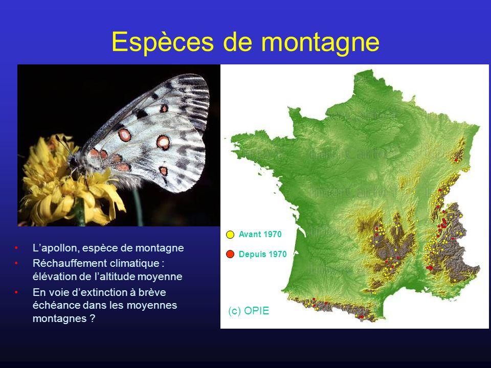 Espèces de montagne Lapollon, espèce de montagne Réchauffement climatique : élévation de laltitude moyenne En voie dextinction à brève échéance dans l
