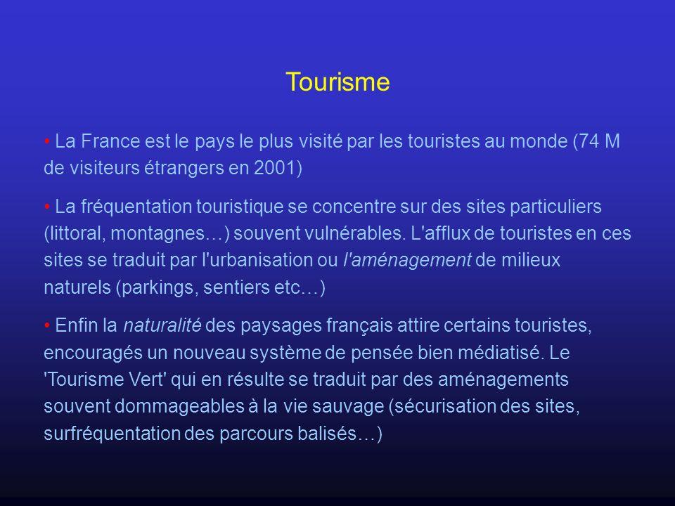 Tourisme La France est le pays le plus visité par les touristes au monde (74 M de visiteurs étrangers en 2001) La fréquentation touristique se concent