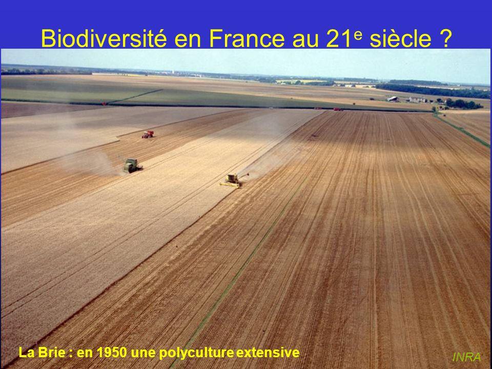 INRA La Brie : en 1950 une polyculture extensive Biodiversité en France au 21 e siècle ?
