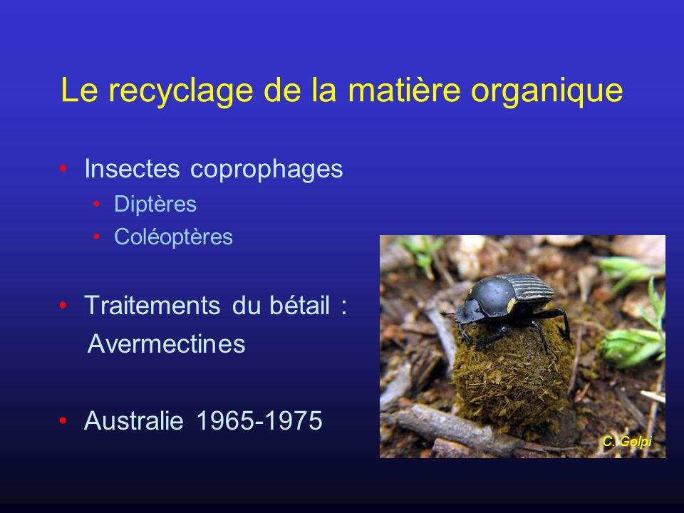 Le recyclage de la matière organique Insectes coprophages Diptères Coléoptères Traitements du bétail : Avermectines Australie 1965-1975 C. Golpi
