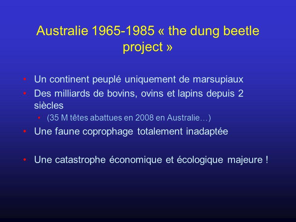 Australie 1965-1985 « the dung beetle project » Un continent peuplé uniquement de marsupiaux Des milliards de bovins, ovins et lapins depuis 2 siècles