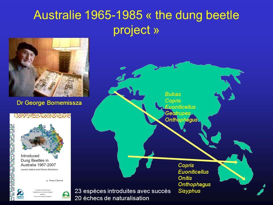 Australie 1965-1985 « the dung beetle project » Dr George Bornemissza Copris Euoniticellus Onitis Onthophagus Sisyphus Bubas Copris Euoniticellus Geot
