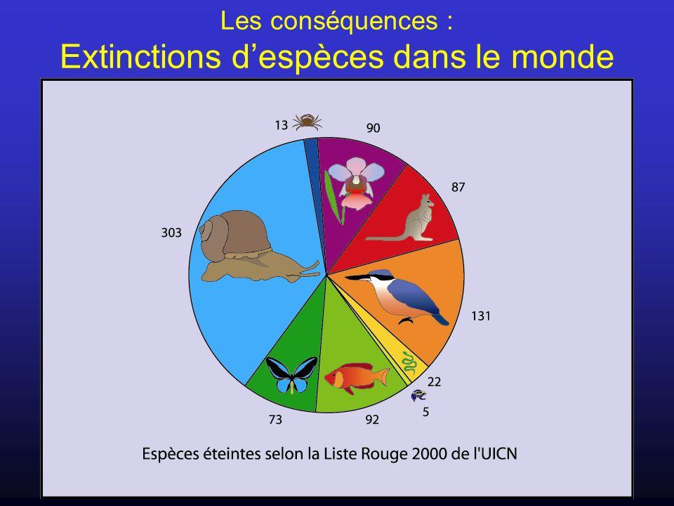 Les conséquences : Extinctions despèces dans le monde