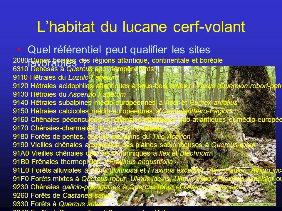 Lhabitat du lucane cerf-volant Association despèces végétales .