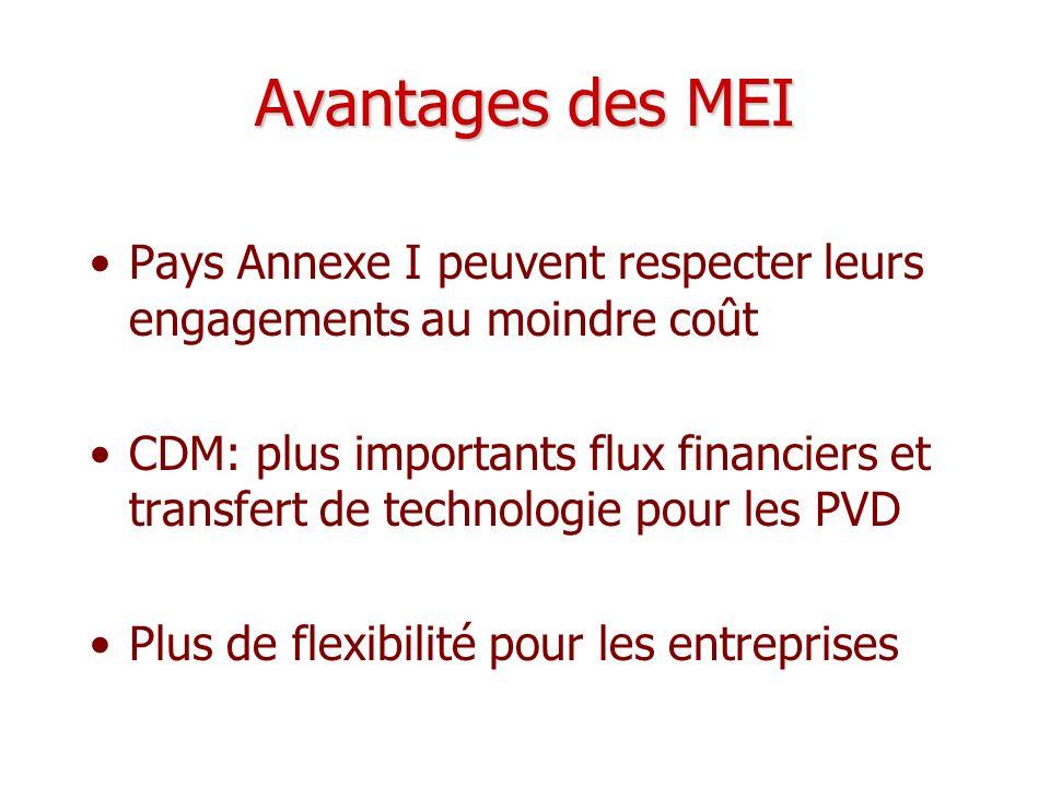Avantages des MEI Pays Annexe I peuvent respecter leurs engagements au moindre coût CDM: plus importants flux financiers et transfert de technologie p
